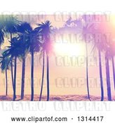 Vector Clip Art of Retro Lit Tropical Beach Sunset with Palm Trees, Painted Style by KJ Pargeter