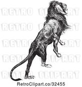 Vector Clip Art of Retro Majestic Lion by Picsburg
