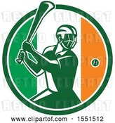 Vector Clip Art of Retro Male Hurling Player in an Irish Flag Circle by Patrimonio