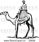 Vector Clip Art of Retro Man Riding a Camel by Prawny Vintage