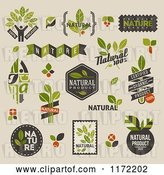 Vector Clip Art of Retro Natural Badges and Labels on Beige by Elena