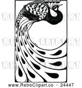 Vector Clip Art of Retro Peacock with Long Feathers by Prawny Vintage