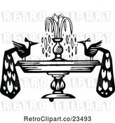 Vector Clip Art of Retro Peacocks on a Fountain by Prawny Vintage