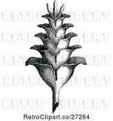 Vector Clip Art of Retro Plant by Prawny Vintage