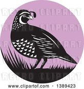 Vector Clip Art of Retro Quail Bird and Grass in a Purple Circle by Patrimonio