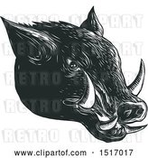 Vector Clip Art of Retro Razorback Boar Head, in Woodcut by Patrimonio