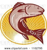 Vector Clip Art of Retro Red Drum Bass Fish Leaping over an Oval of Rays by Patrimonio