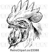 Vector Clip Art of Retro Rooster Portrait by Prawny Vintage