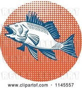 Vector Clip Art of Retro Sea Bass Fish over Orange Halftone by Patrimonio