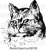 Vector Clip Art of Retro Sitting Cat Face by Prawny Vintage