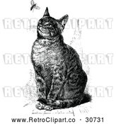 Vector Clip Art of Retro Sitting Cat Watching a Fly by Prawny Vintage