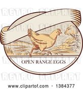 Vector Clip Art of Retro Sketched Chicken Running on a Label with Open Range Text and a Blank Ribbon Banner by Patrimonio