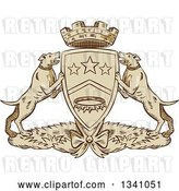 Vector Clip Art of Retro Sketched or Engraved Pit Bull Coat of Arms by Patrimonio