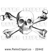 Vector Clip Art of Retro Skull and Cross Bones by BestVector