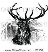 Vector Clip Art of Retro Stag Buck Deer with Antlers 2 by Prawny Vintage