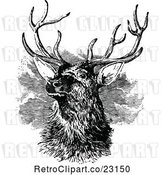 Vector Clip Art of Retro Stag Buck Deer with Antlers 3 by Prawny Vintage