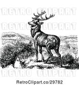 Vector Clip Art of Retro Stag Deer by Prawny Vintage