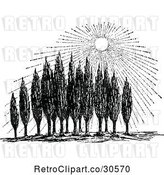 Vector Clip Art of Retro Sun Shining down on Cypress Trees by Prawny Vintage