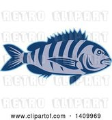 Vector Clip Art of Retro Swimming Sheepshead Fish by Patrimonio