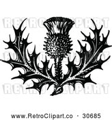 Vector Clip Art of Retro Thistle Flower by Prawny Vintage