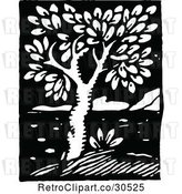 Vector Clip Art of Retro Tree by Prawny Vintage