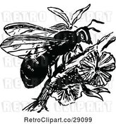 Vector Clip Art of Retro Wasp on a Branch by Prawny Vintage