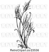 Vector Clip Art of Retro Wheat Plant by Prawny Vintage