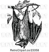 Vector Clip Art of Retro Wild Bat Hanging from a Tree by Prawny Vintage