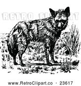 Vector Clip Art of Retro Wolf 1 by Prawny Vintage
