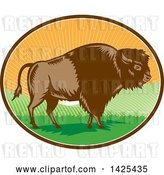 Vector Clip Art of Retro Woodcut American Buffalo Bison in an Oval with Hills and Sun Rays by Patrimonio