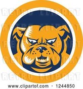 Vector Clip Art of Retro Woodcut Angry Bulldog in a Blue and Yellow Circle by Patrimonio