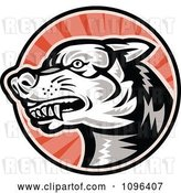 Vector Clip Art of Retro Woodcut Angry Dog over Red Rays by Patrimonio