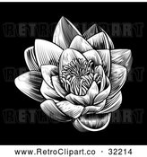 Vector Clip Art of Retro Woodcut Blooming Waterlily Lotus Flower on Black by AtStockIllustration