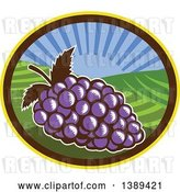 Vector Clip Art of Retro Woodcut Bunch of Purple Grapes in an Oval with a Sunrise or Sunset by Patrimonio