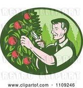 Vector Clip Art of Retro Woodcut Farmer Pruning Apple Trees in an Orchard by Patrimonio