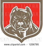 Vector Clip Art of Retro Woodcut Tough Pitbull Guard Dog in a White Red and Brown Shield by Patrimonio