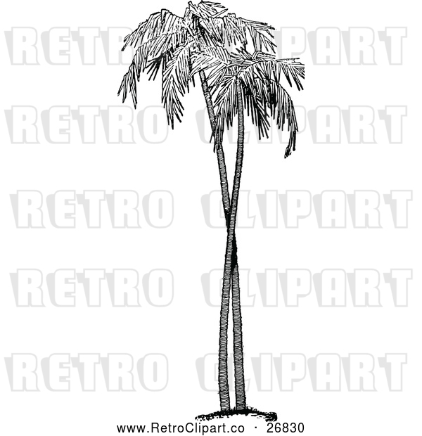 Clipart of Retro Palm Trees