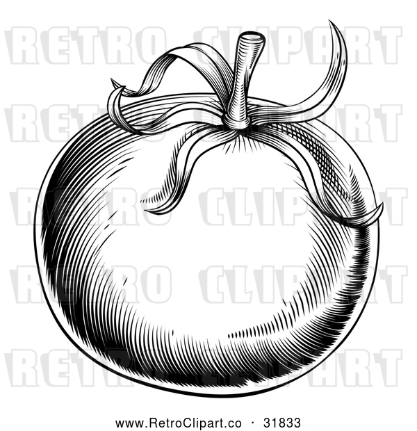 Vector Clip Art of a Retro Black Tomato