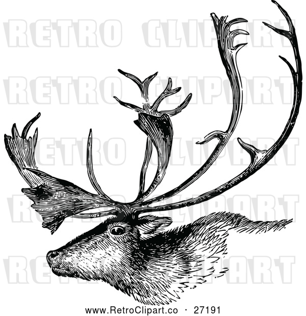 Vector Clip Art of a Retro Deer Stag with Trophy Antlers