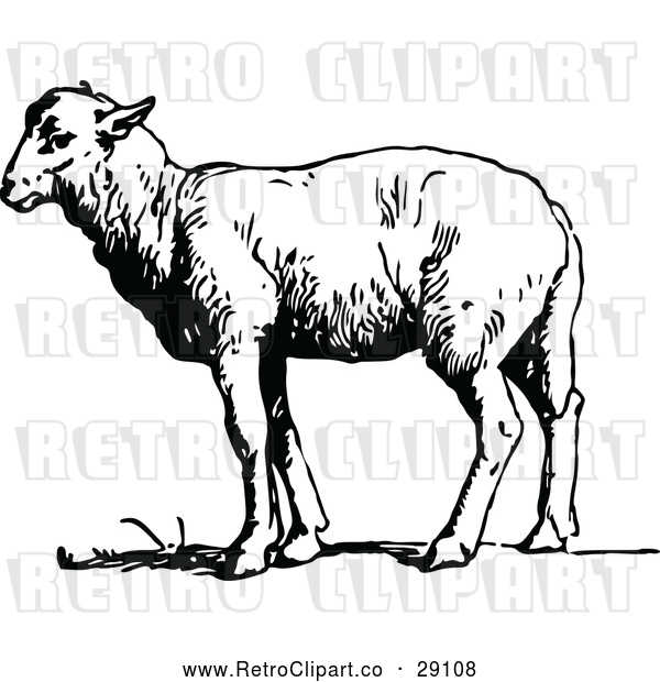 : Vector Clip Art of a Retro Sheep Standing Still - Black and White