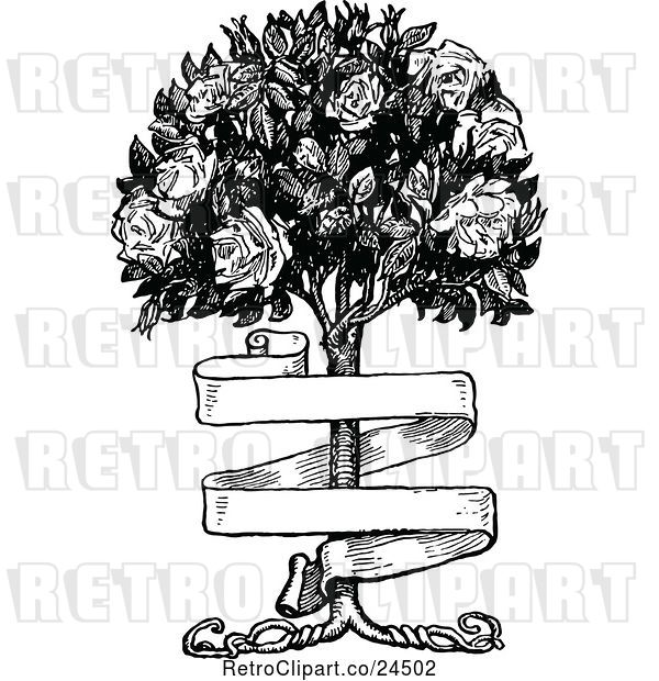 Vector Clip Art of Banner and Rose Bush