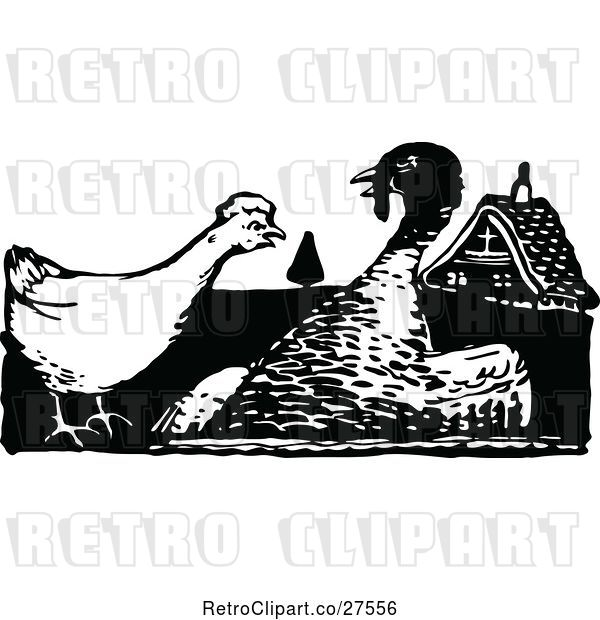 Vector Clip Art of Hen and Turkey Bird