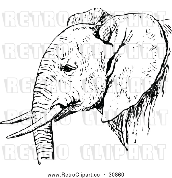 Vector Clip Art of Retro African Elephant