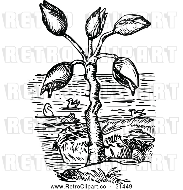 Vector Clip Art of Retro Barnacle Tree and Geese