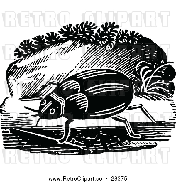 Vector Clip Art of Retro Beetle