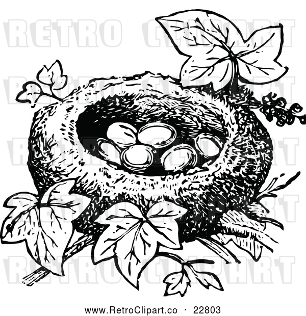 Vector Clip Art of Retro Bird Nest with Eggs