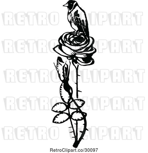 Vector Clip Art of Retro Bird Perched on a Rose