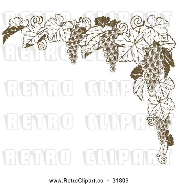 Vector Clip Art of Retro Brown Grape Vine Corner Border
