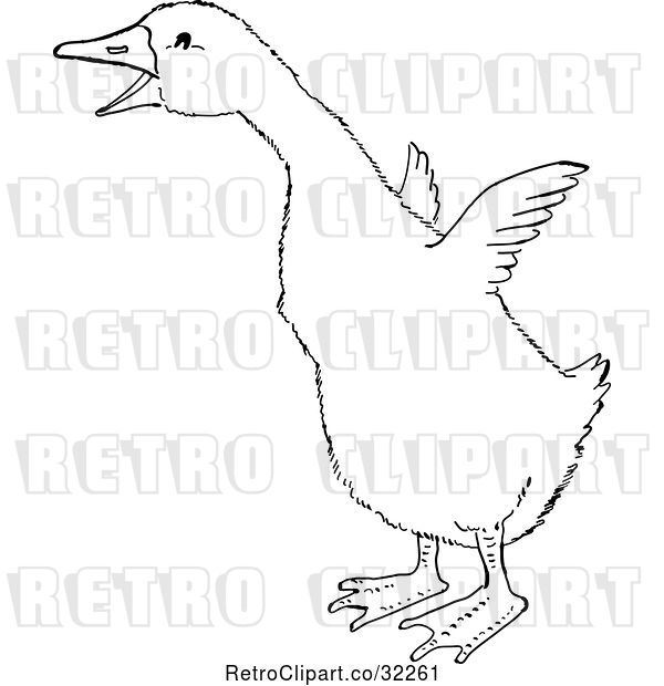 Vector Clip Art of Retro Cartoon Gosling Flapping Its Wings Line Drawing