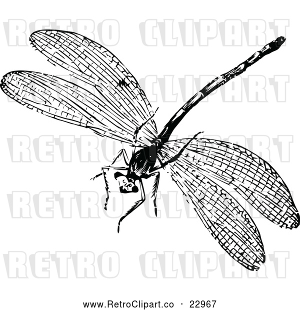 Vector Clip Art of Retro Dragonfly